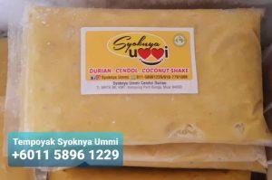 Cara buat tempoyak homemade tempoyak for sale Syoknya Ummi